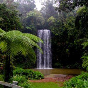 Tropical Getaway (2 day)